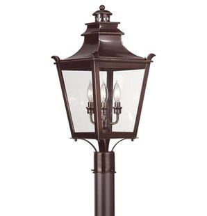 Darby Home Co Theodore 3-Light Lantern He..