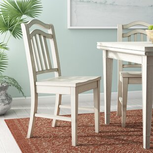 Beachcrest Home Silver Springs Side Chair (Set of 2)