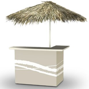Home Tiki bar by Best of T..