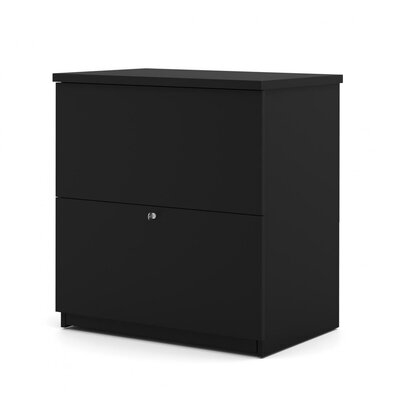 Alves 2-Drawer Lateral filing cabinet Color: Black by Mercury Row
