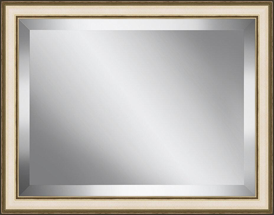 Ashton Wall Décor Llc Champagne Plate Accent Mirror Wayfair