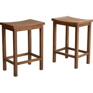 Struthers 24 Bar Stool (Set of 2)