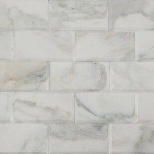Unusual 1 Ceramic Tile Thin 13X13 Ceramic Tile Shaped 2 X 2 Ceramic Tile 2 X 4 Subway Tile Young 24X24 Ceramic Tile Green2X2 Suspended Ceiling Tiles Calacatta Gold Marble Tile | Wayfair