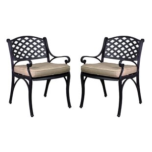 Amelio Patio Dining Chairs with Cushions (Set of 2)