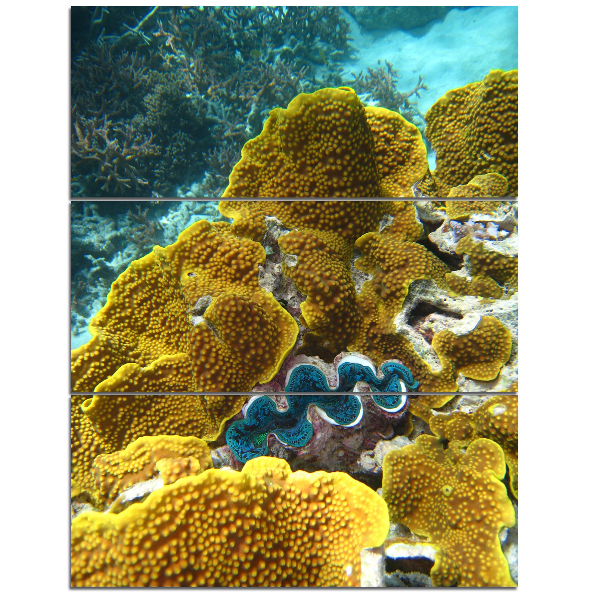 DesignArt Barrier Reef Underwater Scene - 3 Piece Wall Art on ...