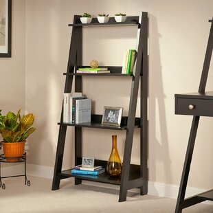 Rasnick Ladder Bookshelf by Wrought Studio