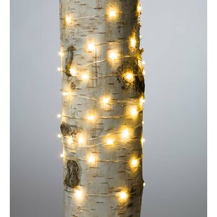 Plow & Hearth Firefly 60 Light String Lights (Set of 12)