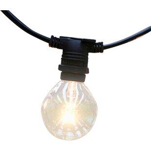 The Paper Lantern Store 25-Light 29 ft. Globe String Lights