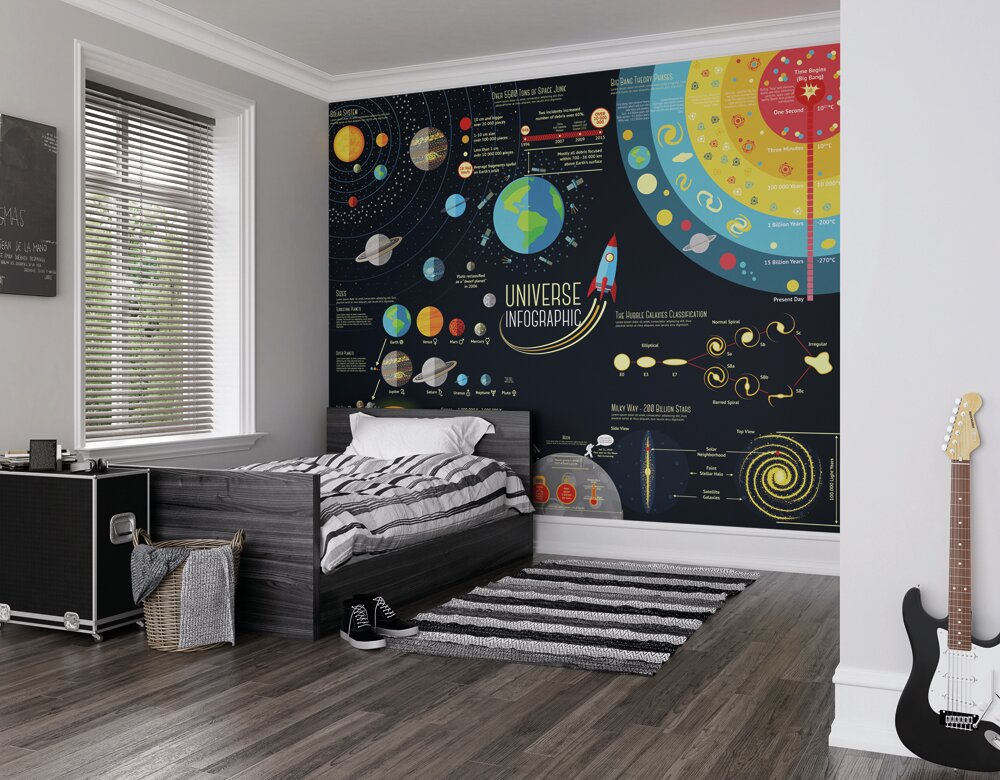 ohpopsi Scientific Universe 3m x 2.4m Wall Mural & Reviews ...
