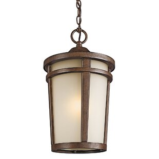 Harvey 1-Light Outdoor Hanging Lantern