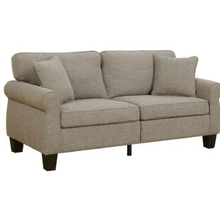 Hideaway Transitional Movable Sofa