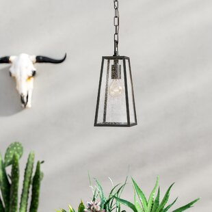 Karly 1-Light Outdoor Pendant By Trent Austin Design Outdoor Lighting