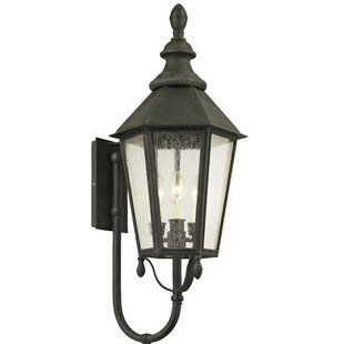 Aaryahi 3-Light Outdoor Sconce by Darby H..