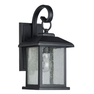 Affordable Magnusson 1-Light Outdoor Wall Lantern By Charlton Home