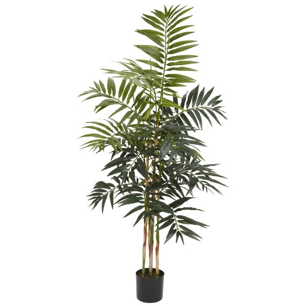 entracing palm tree type house plant.  Nearly Natural Bamboo Palm Tree in Pot Reviews Wayfair