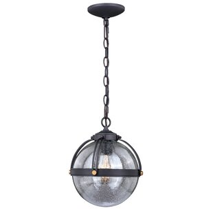 Blanding 1-Light Outdoor Pendant