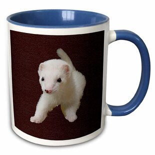 Arzola Baby Albino Ferret Coffee Mug