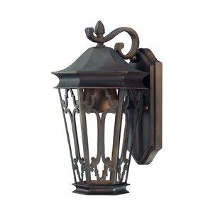 Alcott Hill Christa 1-Light Outdoor Wall Lantern