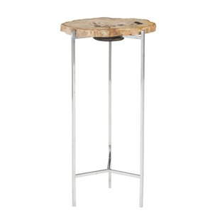 Read Reviews Petrified Wood Beverage End Table by Phillips Collection