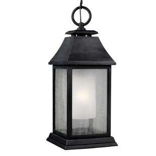 Darby Home Co Hague 1-Light Outdoor Hanging Lantern