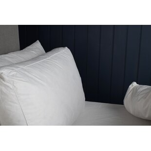 Kinbrae L38 X W38cm Pillow By Symple Stuff