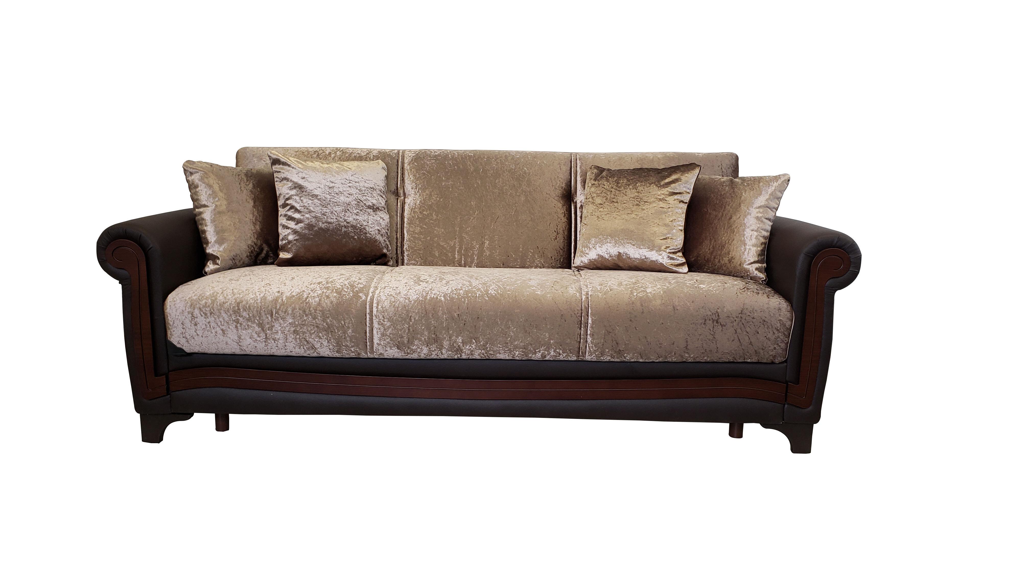 Shah Convertible Sleeper Sofa