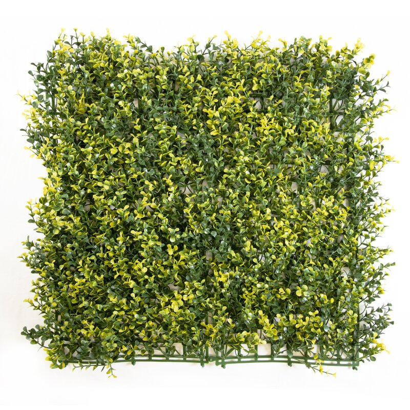 Primrue 24 Piece Artificial Boxwood Hedge Set Wayfair
