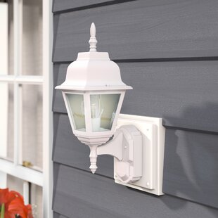 Larchmont 1-Light Outdoor Sconce