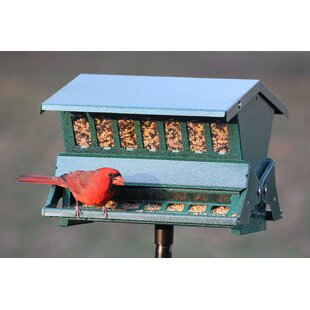 Kamila Hopper Bird Feeder By Sol 72 Outdoor