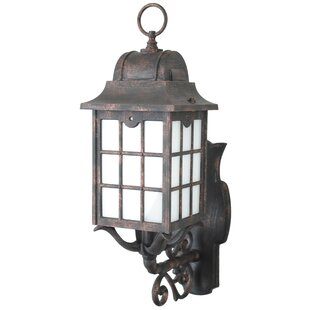 Reviews Archard 1-Light Outdoor Sconce By Darby Home Co