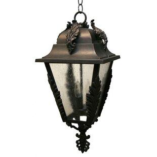 Alcott Hill Petrey 3-Light Outdoor Hanging Lantern