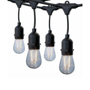Zipcode Design Bellville 48 ft. 15-Light Novelty String Lights