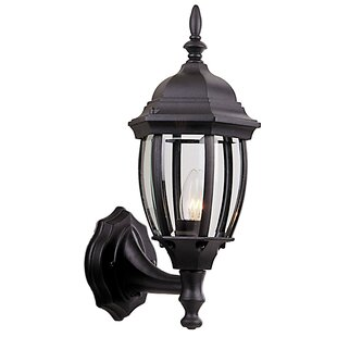 Best Choices Oakhill 1-Light Metal Outdoor Sconce By Charlton Home