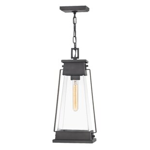 Arcadia 1-Light Outdoor Pendant