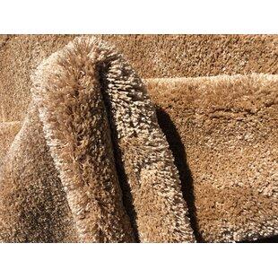 Armino Luxury Premium Shag Beige Area Rug by Ebern Designs