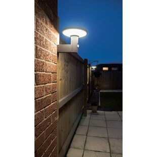 Willenbard LED Solar Outdoor Wall Lantern With Motion Sensor By Sol 72 Outdoor