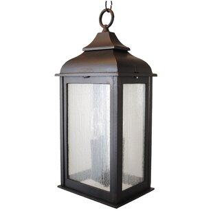Alcott Hill Fynn 3-Light Outdoor Hanging Lantern