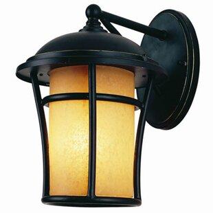 Best Price 1-Light Outdoor Wall Lantern By Efficient Lighting