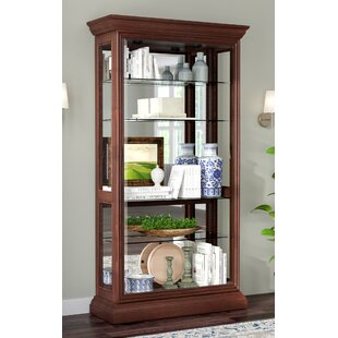 Darby Home Co Nancy Eden Lighted Curio Cabinet