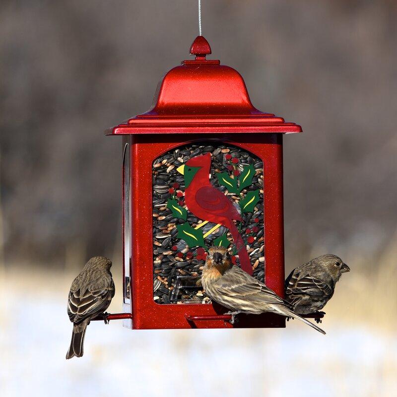 Holiday Cardinal Lantern Hopper Bird Feeder