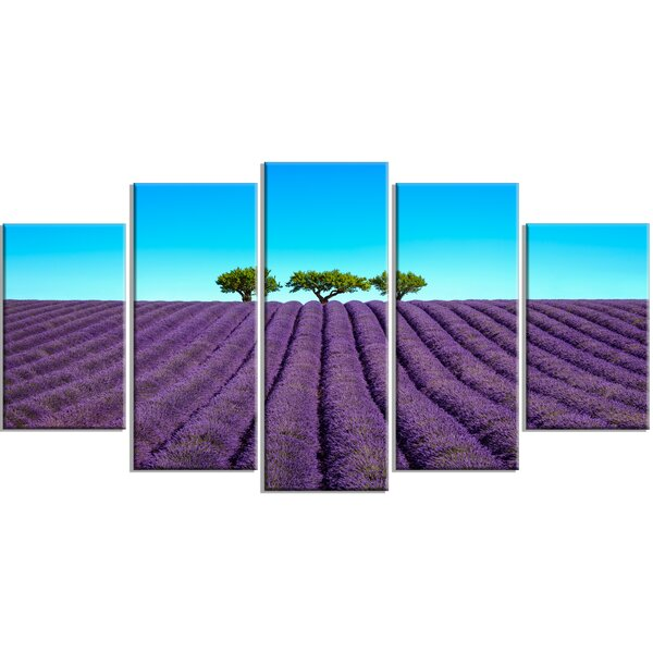 Designart Lavender Flowers And Uphill Green Trees 5 Piece Wall Art On Wrapped Canvas Set Wayfair