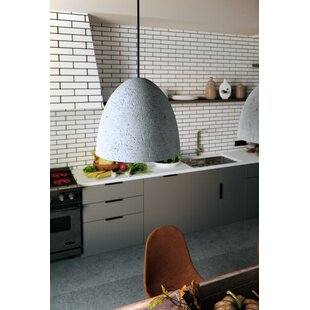 Olszewski 1-Light Cone Pendant By Brayden Studio Ceiling Lights