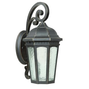 Searching for Minarets Lake 1-Light Outdoor Wall Lantern By Yosemite Home Decor
