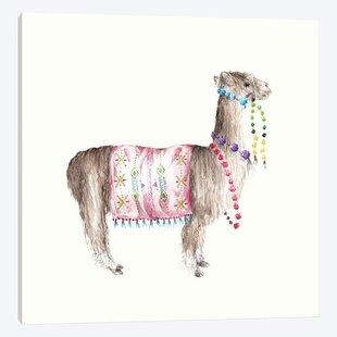 'Colorful Peruvian Alpaca' Canvas Art