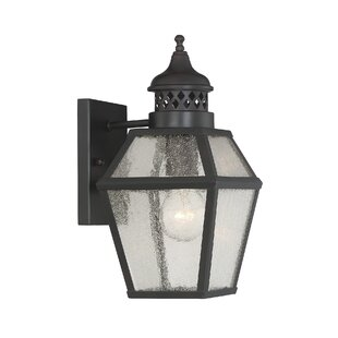 Harshbarger 1-Light Outdoor Wall Lantern by Alcott Hill