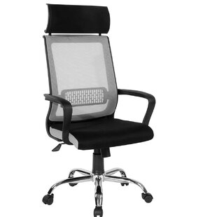 Holthaus Ergonomic Mesh Office Chair