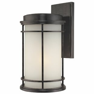 Teminot 1-Light Outdoor Wall Lantern by Bloomsbury Market