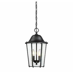 Charlton Home Raritan 2-Light Outdoor Hanging Lantern