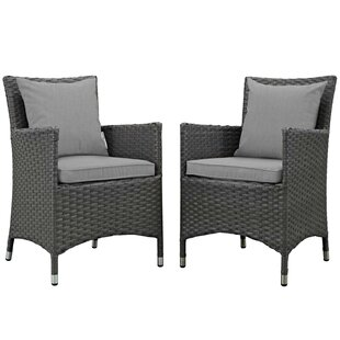Tripp Patio Dining Chair with Cushion (Set of 2)