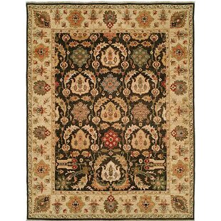 Reviews Royal Zeigler Hand-Knotted Beige/Black Area Rug By Shalom Brothers